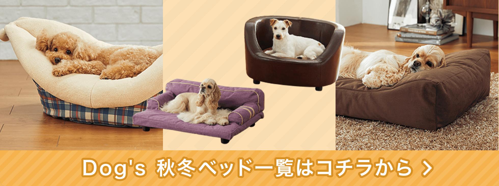 他にも♪愛犬が喜ぶ幸せベッドがいっぱい!
