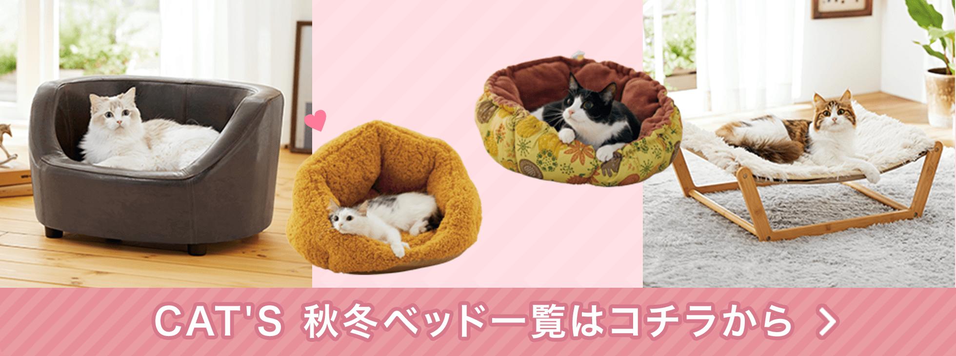 猫ちゃん喜ぶ幸せベッドはコチラをチェック!