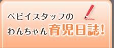 ペピイスタッフのわんちゃん育児日誌!