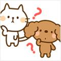 愛猫の排泄時の姿勢