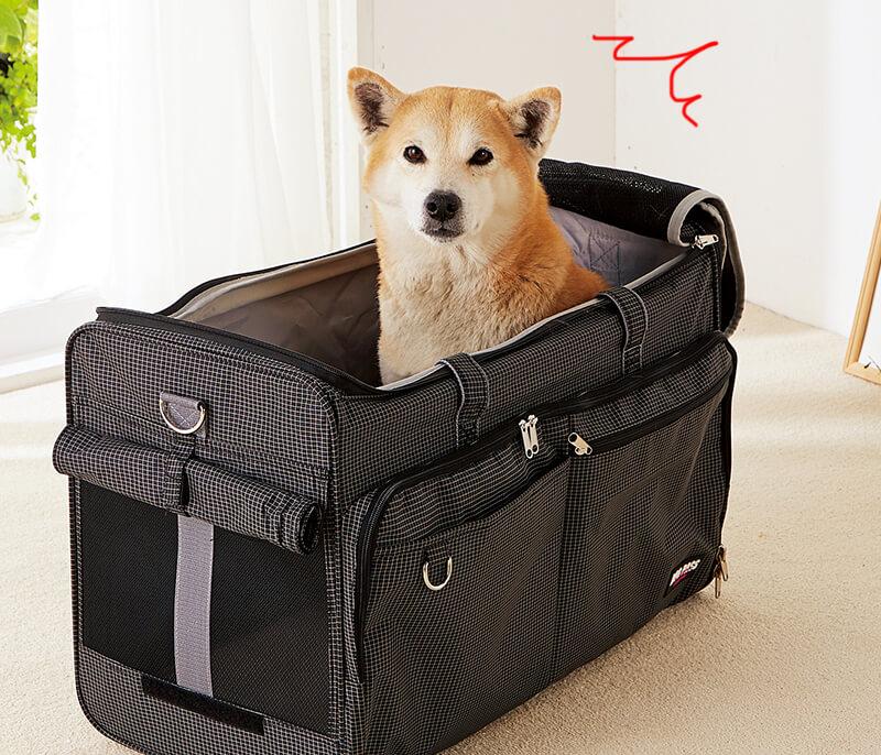 キャリーバッグにこもるニオイ