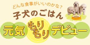 神吉先生の食事アドバイス